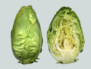 Feiner Krautsalat