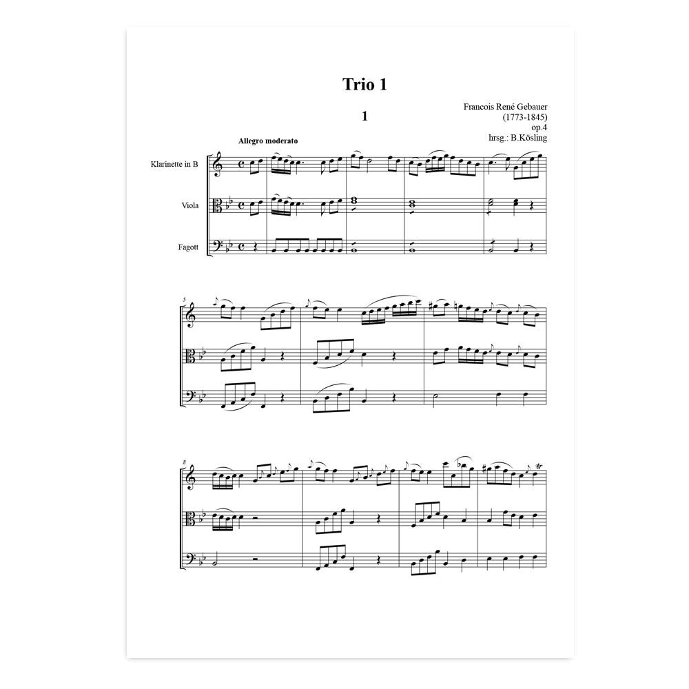 Gebauer-Trio-01-01