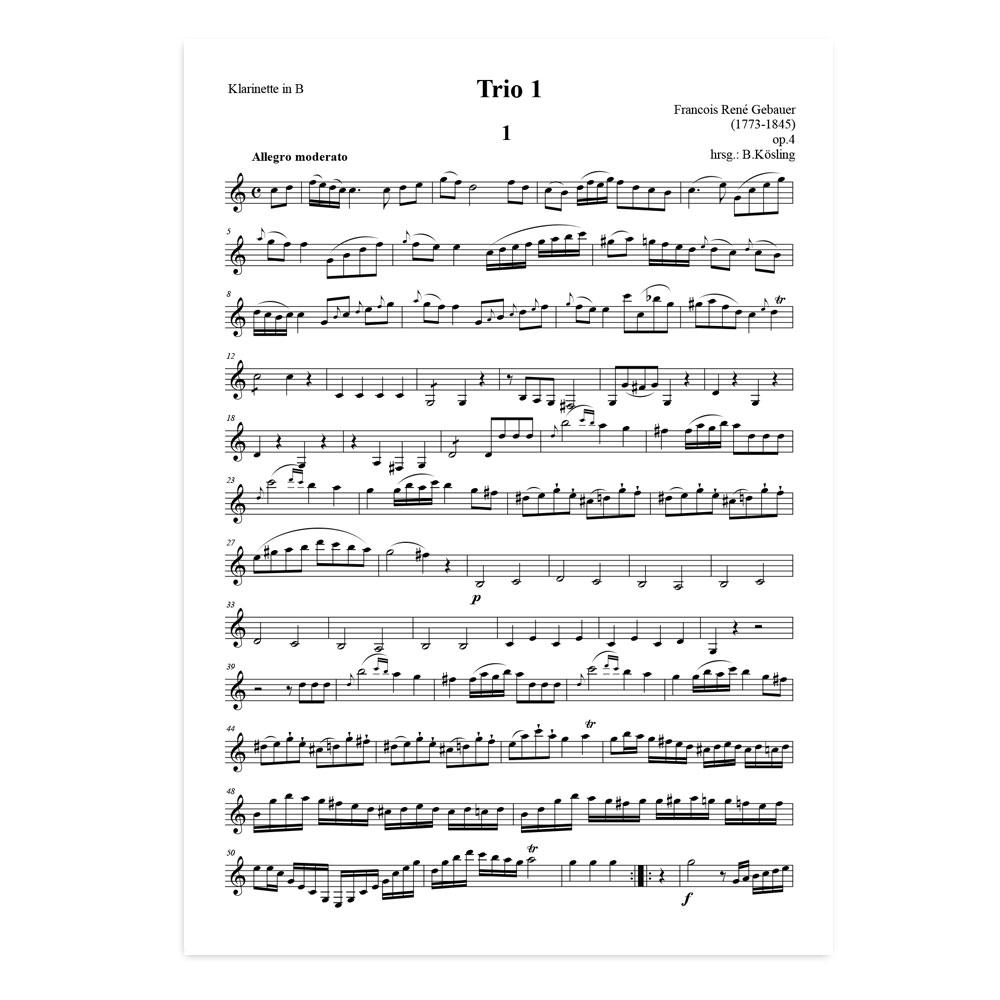 Gebauer-Trio-01-02