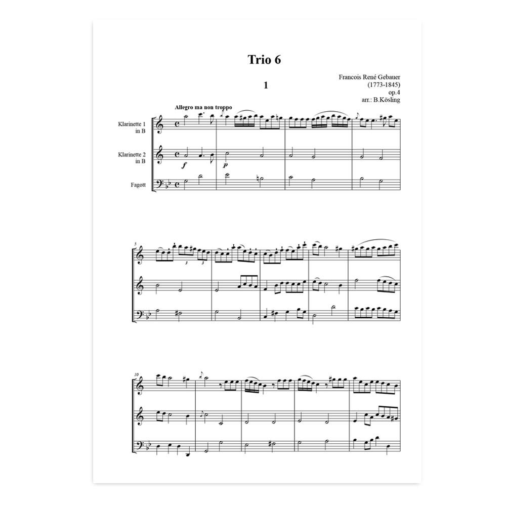 Gebauer-trio-6-01