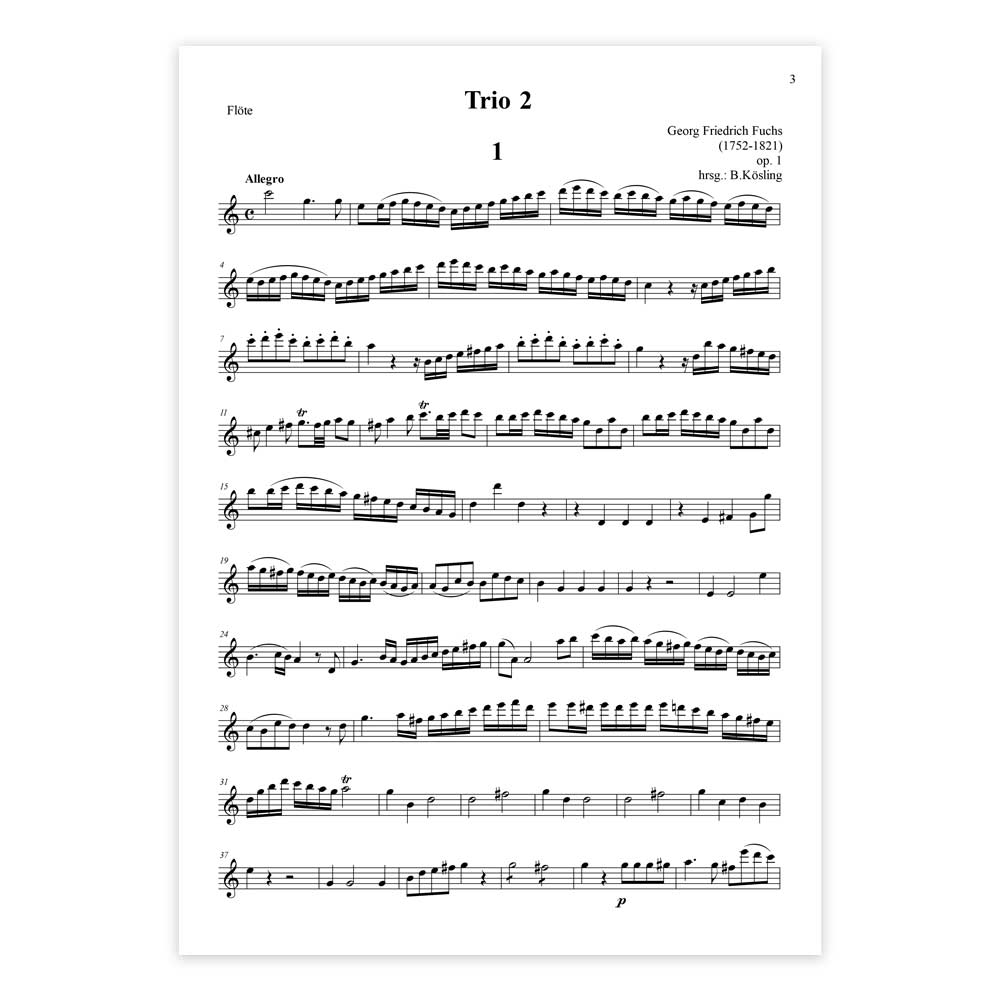 Fuchs-Trio-2-fl-kl-fg-02